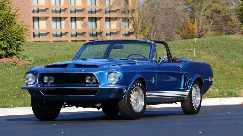 Shelby 1