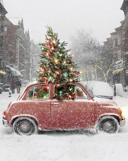 Car Christmas.12 Days Of Christmas Cars Sure To Boost Your Holiday Spirit